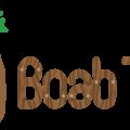 Boab Toys